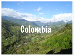 "The famous ""Valle del Cocora"""